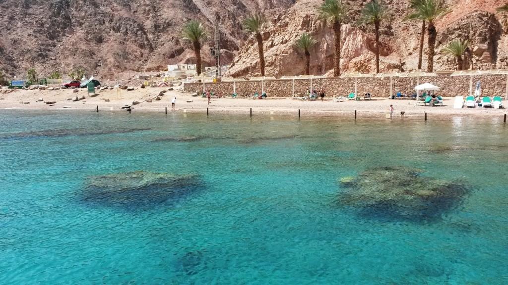 Травмоопасные кораллы на пляже